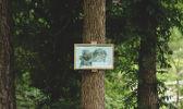 Señalización forestal