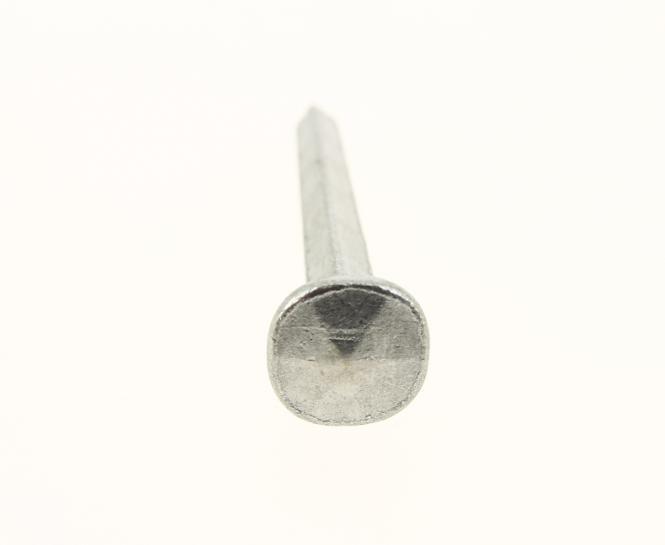 Clavo forjado Cabeza diamante - Acero pulido (100 clavos)